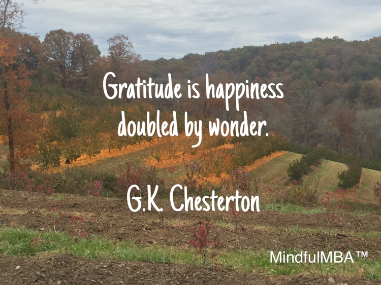 Gratitude_Chesterton quote w. tag