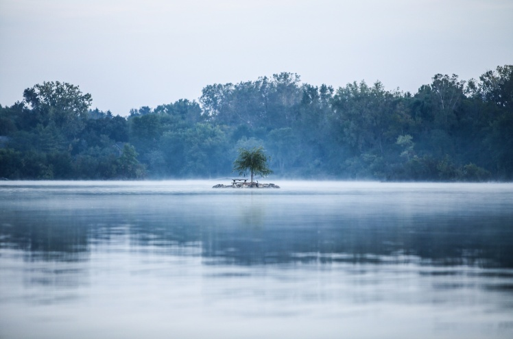 Isolated tree & lake_Teddy Kelley_Stocksnap
