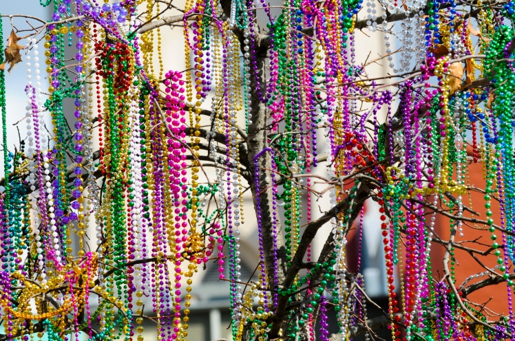 Mardi Gras beads in tree_CRief