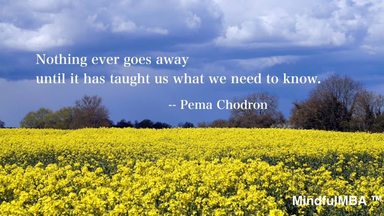 Pema Chodron_Nothing Ever Goes Away quote w tag