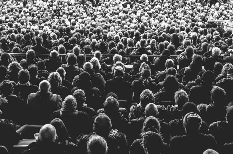 audience_davide-ragusa