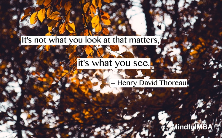 thoreau-what-you-see-quote-w-tag