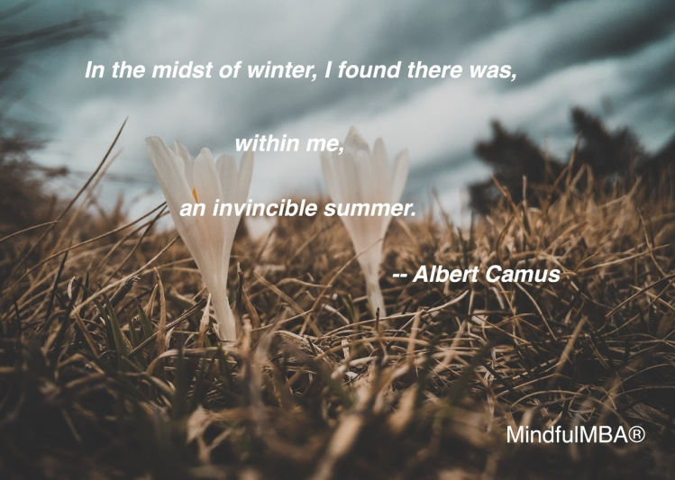 camus-summer-quote-w-tag