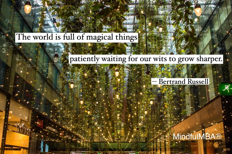 b-russell-magical-things-quote-w-tag
