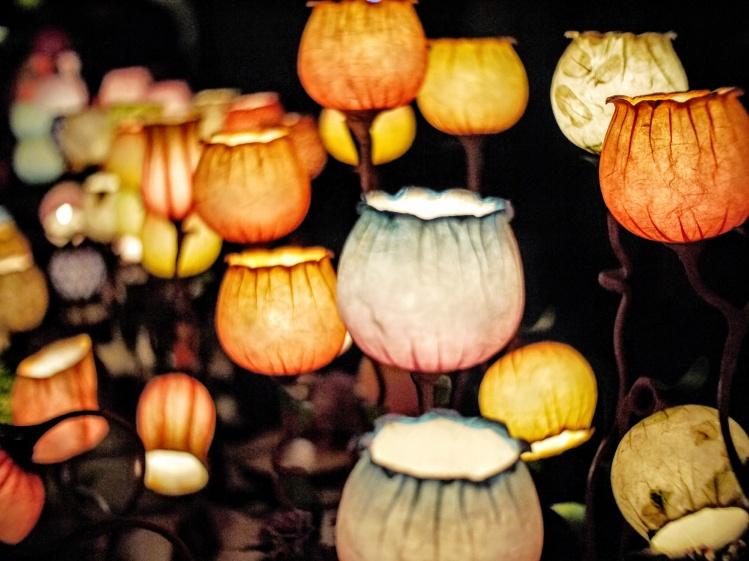 Tulip lanterns_Emile-Victor Portenart