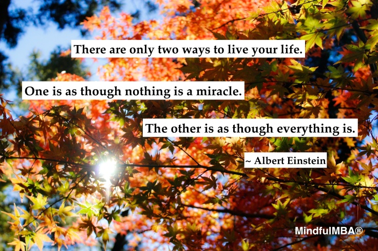 Einstein Miracles quote w tag_Jérôme Prax