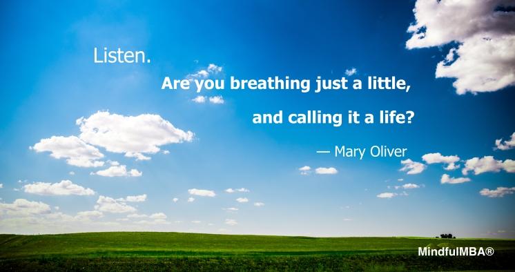 Listen_Breathe Just a Little_M Oliver_Elliott Chau