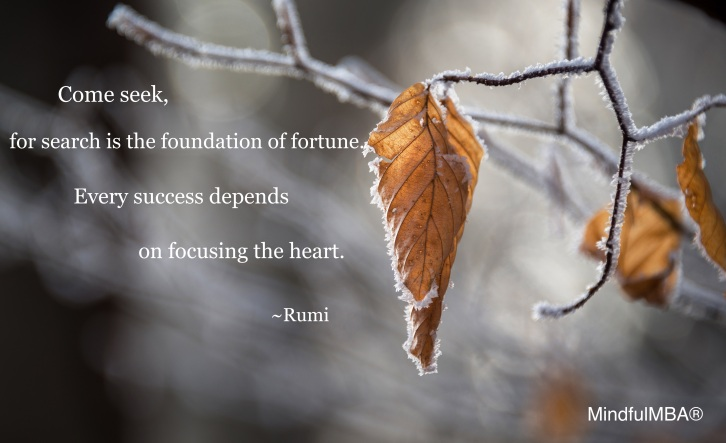 Rumi_Come seek fortune quote w tag