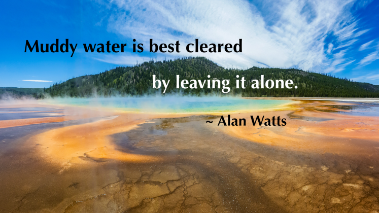 A Watts_Muddy water quote w tag
