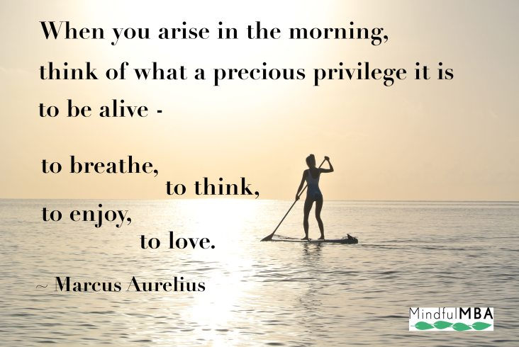 M Aurelius_privilege to be alive quote w logo