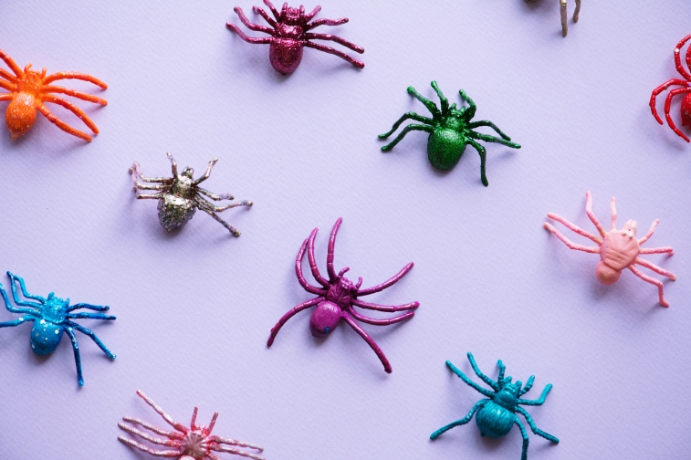 Cute little spiders on a paper